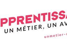 Entreprises : Apprentissage