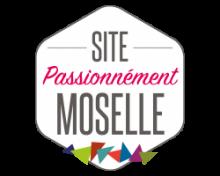 Tourisme : les sites Passionnément Moselle gratuits tout l'été !