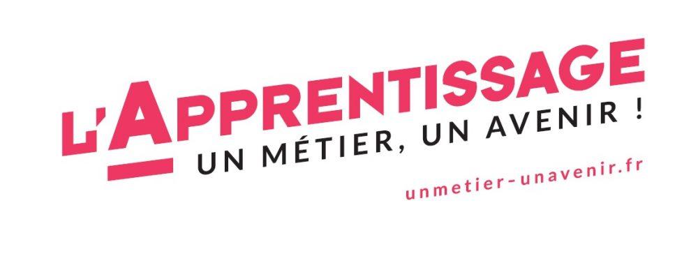Entreprises : Apprentissage : un métier, un avenir