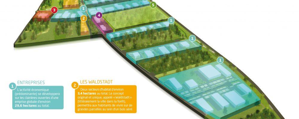 Warndt ParK : Les travaux de la Waldstadt 2 sont lancés
