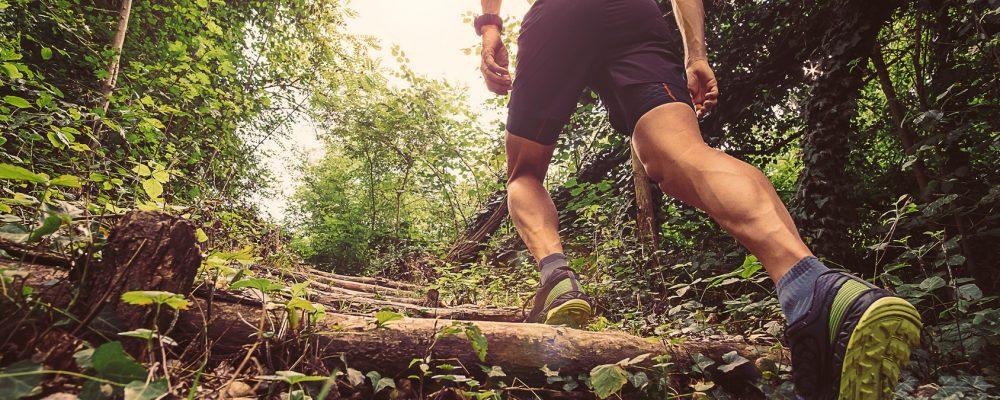 Tourisme / Sport : 2ème édition du trail de la Madone