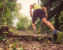 Tourisme/Sport : 4ème édition du trail de la Madone de Varsberg