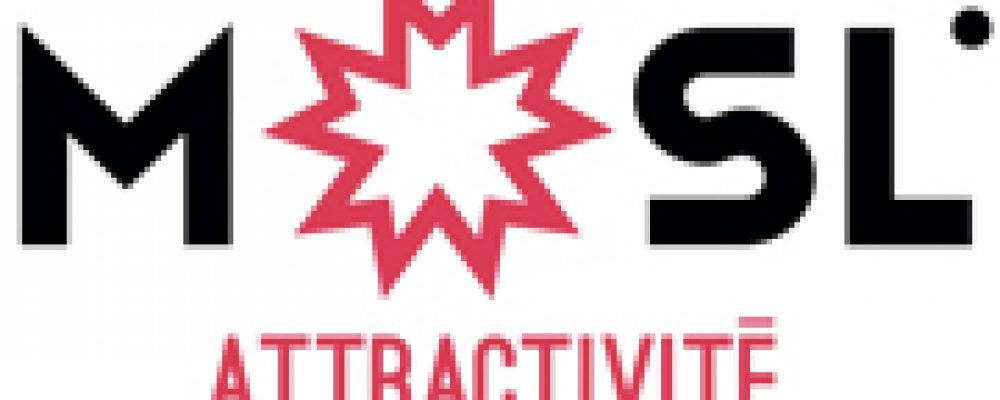 Covid-19 : Le Département et Moselle Attractivité offrent 300 kits de protection aux restaurateurs mosellans