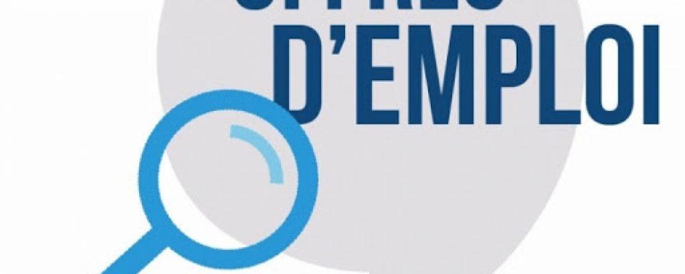 Emploi –  Mairie de Sarrebruck : chargé de Missions Relations internationales / Europe